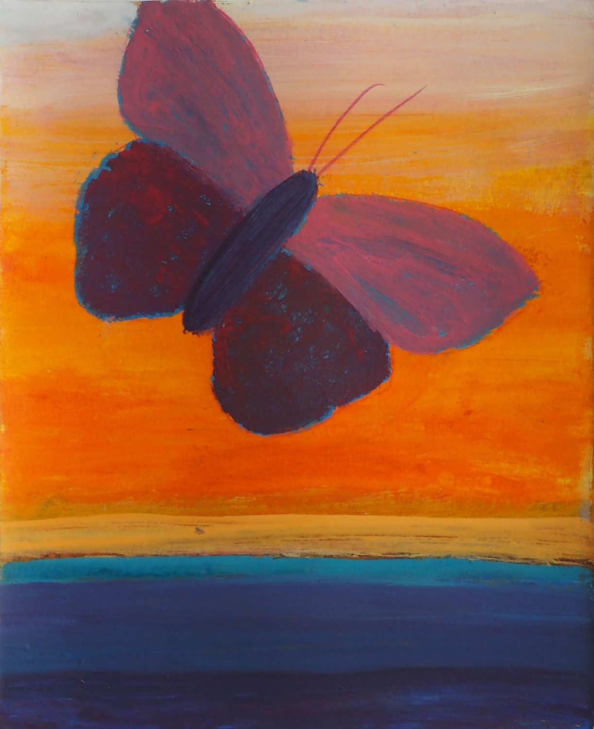 Butterfly And Orange Sky